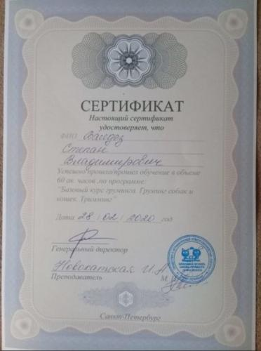 Валдез-сертификат-10