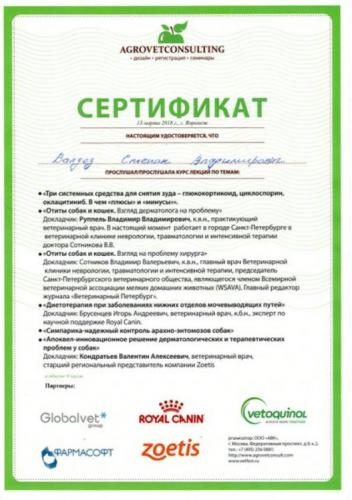 Валдез-сертификат-2