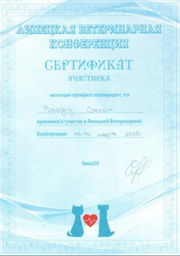 Валдез-сертификат-4