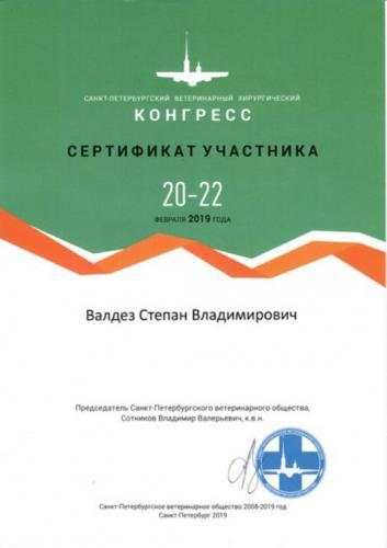 Валдез-сертификат-5