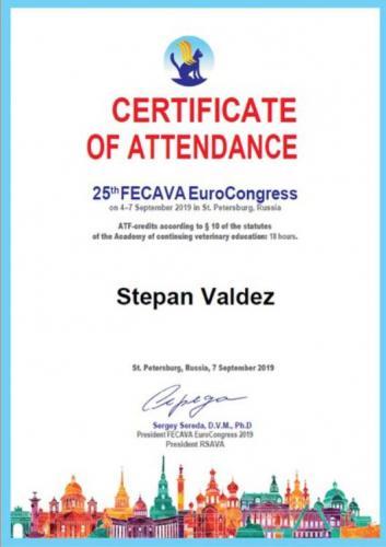 Валдез-сертификат-7