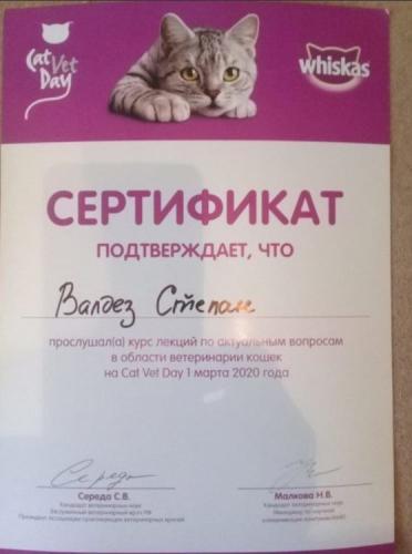 Валдез-сертификат-8