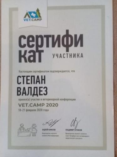 Валдез-сертификат-9