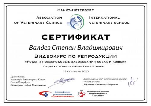 Валдез-сертификат-11