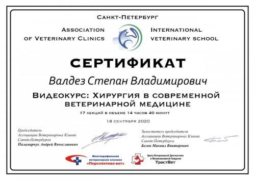 Валден-Сертификат-12